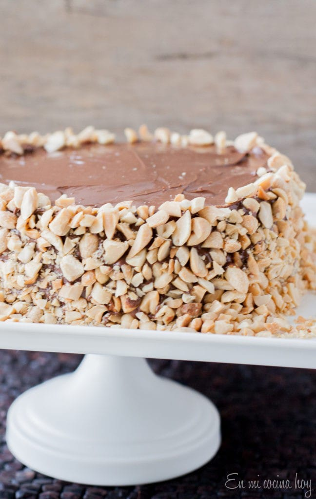 Nutella and Peanut Layer Cake